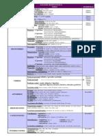 CATEGORÍAS GRAMATICALES-resumen