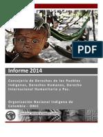 Informe Vulneraciones a Los Ddhh e Infracciones Al Dih 2014