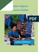 Pueblos Indígenas - Convenio CODISRA