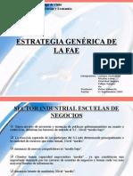 ESTRATEGIA GENÉRICA DE LA FAE