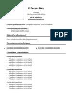Modèle CV Fonctionnel (Mixte)