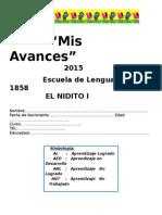 Mis Avances 2015.docx