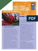 Estimacion de Inversion Para Efrentar El Cambio Climatico en Peru