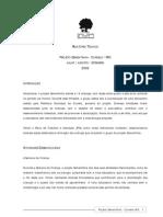 2006 Relatório Técnico Sementinha Curvelo - MG (JUL-SET-06)