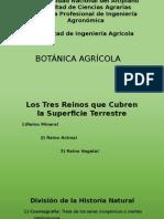 Botánica Agrícola , Raíz 2014