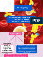 Antigeno Ultimo
