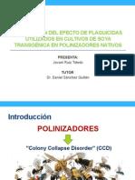 Anteproyecto Jovani Ruiz Toledo