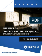 workshop-dcs.pdf