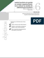 Aula 06 - O Modelo Brasileiro de Gestão nos Estudos Organizacionais