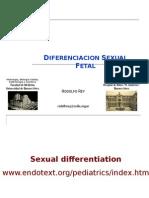 Diferenciacion Sexual