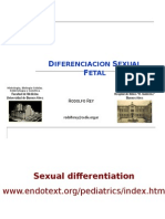 Diferenciacion Sexual