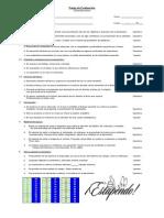 Pauta Evaluación - Disertaciones