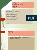 Fundación Una Esperanza Presentación Del Proyecto de Grado en Diapositivas