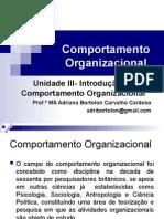 Unidade III Comp Organizacional