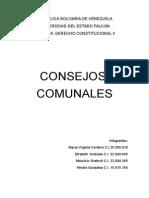 Trabajo de Derecho Constitucional II