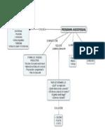 Mapa mental de los  Programas Audiovisuales