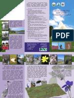 Onon Brochure Dadal