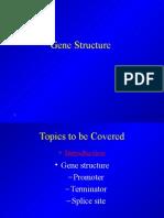 1b_GeneStructure