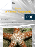 Pictures to Admire - Stars of Natioanl Geographic