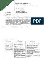 Unidad de Aprendizaje y Sesion - Copia
