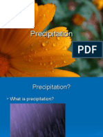 02 Precipitation.ppt