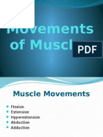 Movements of Muscles