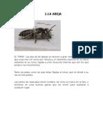 1.entomologiadocx