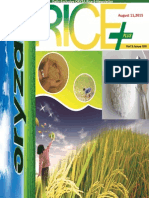 11th August ,2015 Daily Exclusive ORYZA Rice E-Newsletter by Riceplus Magazine
