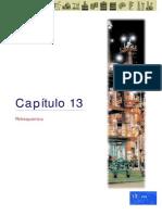 Capitulo 13 - Petroquimica