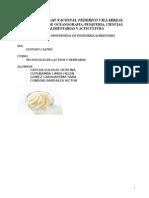 Elaboracion de Queso Tipo Crema 2015 (1)