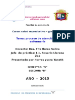 Proceso de Atencion de La Lic. Rosario