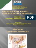 presentacion del pancreas