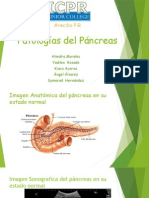 pancreas presentacion ii