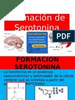 adrenalina-epinefrina-serotonina.pptx