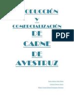 0000 PDF Avestruz