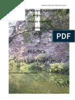 (Reporte) Cantera  unam.geologia