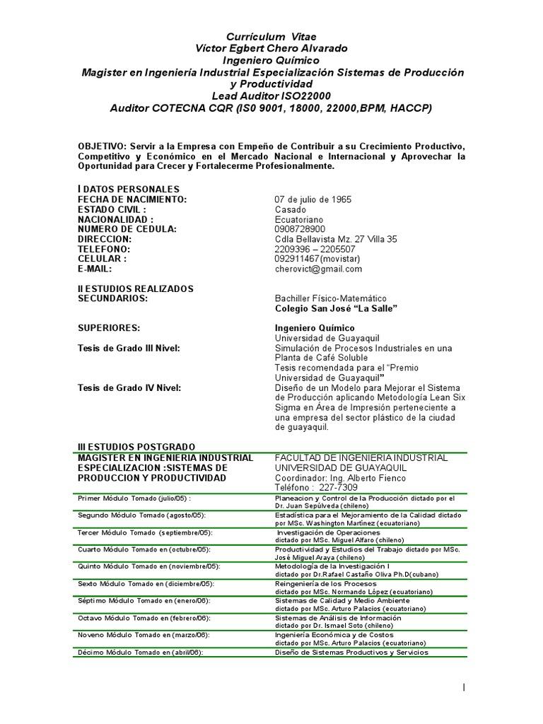 Lujo Currículum Del Director De Ingeniería Bandera - Ejemplo De ...