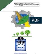 APOSTILA_PROFESSOR_CORREIA.pdf