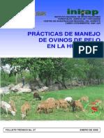 PRODUCCIÓN DE OVINOS