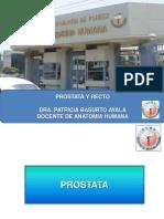 Prostata y Recto