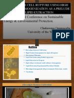 Chuks Presentation on Algae Experiment