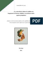 Análise Sobre a Microbiota Cutânea de Anfíbios Em Fragmentos de Floresta Atlântica e Sua Eficácia Contra Agentes Patogênicos