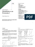Métodos Quantitativos em Economia I Rodrigo Rodrigues Garcia.pdf