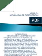 Metabolismo de Carbohidratos m.p. Ot-11 m4 (2)