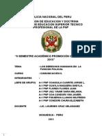 Monografia Los Derecho Humanos en La Funcion Policial Grupo de So3 Pnp Tumba 1