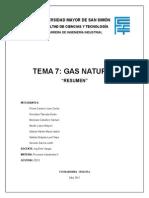 Tema 7 Gas Natural Resumen
