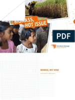 Biomass_hot_issue.pdf