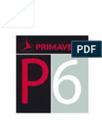 Primavera P6 and project mgt.docx