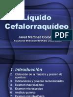lquidocefalorraqudeo-140204015312-phpapp02