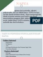 Presentation Napza